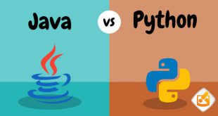 Puthon VS Java